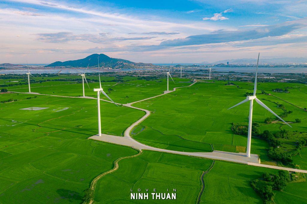 Tour du lịch Ninh Thuận 1 ngày