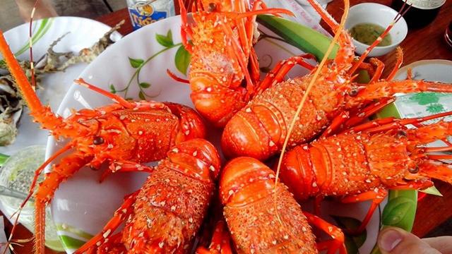 Kinh nghiệm du lịch Ninh Thuận 4 ngày 3 đêm