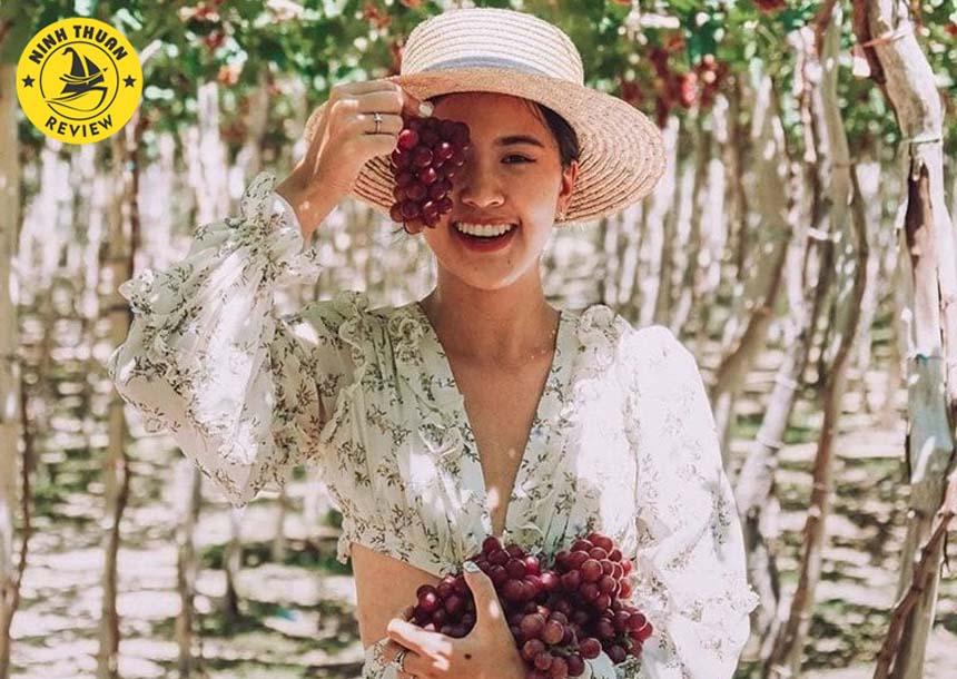 Du lịch vườn nho Ninh Thuận